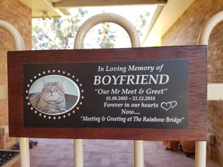 boyfriend-plaques