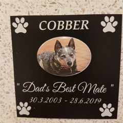 cobber-plaques